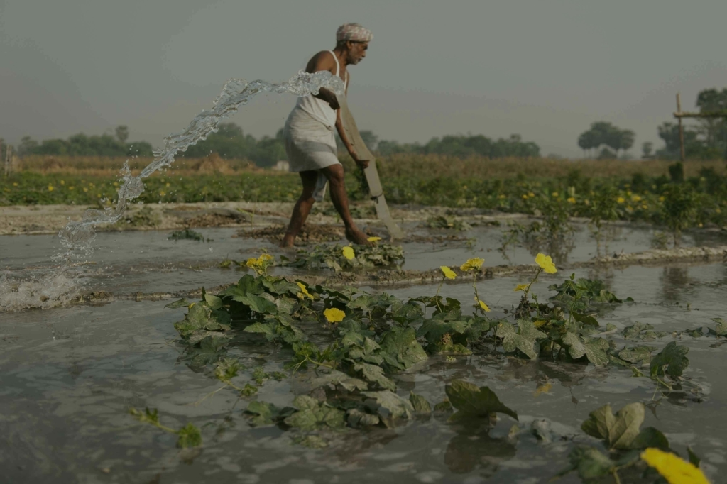 iVATE Digital Green Partner-Bihar